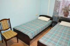 Double room with 2 separate beds (economy class)